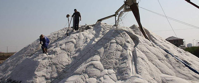 a bulk raw salt in salt factory