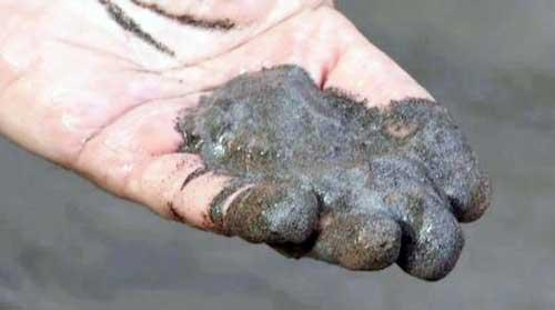 the wet coal fine slurry