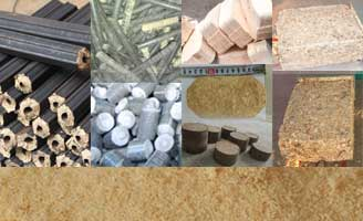 four different wood sawdust briquette